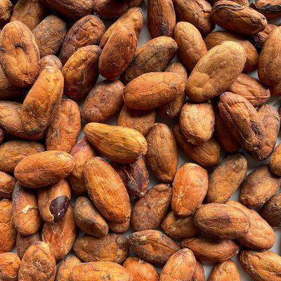 Cacao - Aceptado