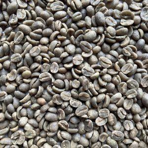 Cafe Primera - Aceptado
