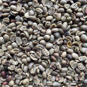 Cafe Primera - Rechazo